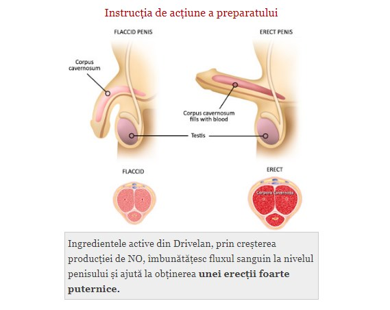 prostatita a dispărut erecția de dimineață)