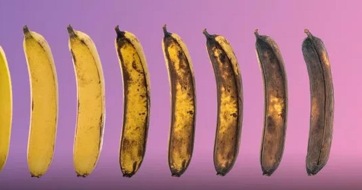 penisul devine mai mare de la erecție)