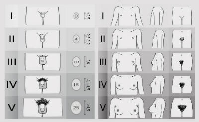 Care este mărimea perfectă la bărbați?