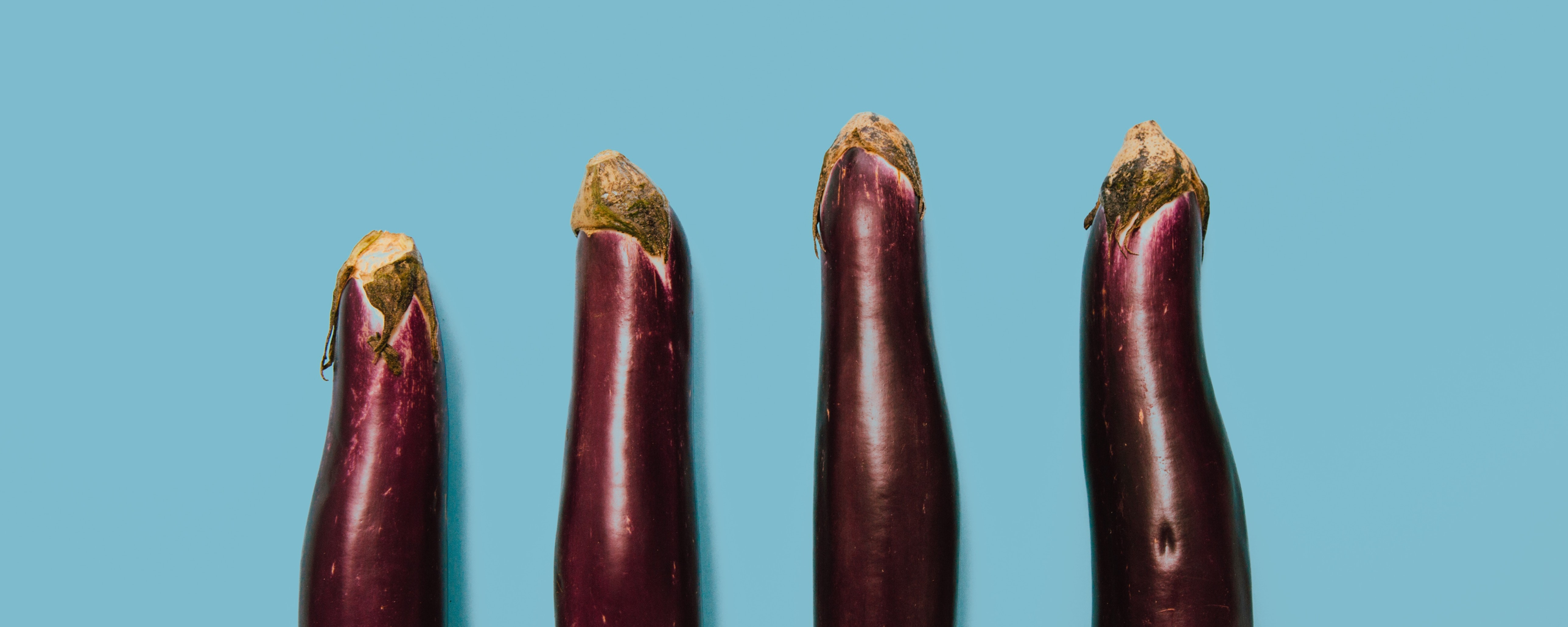în timpul unei erecții, penisul se mărește penis și lenin