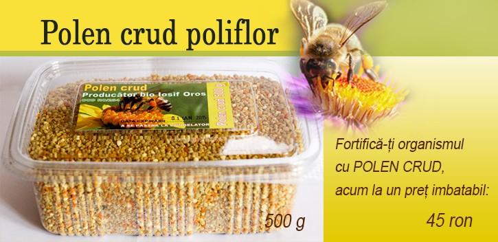 Polenul de albine: beneficii și contraindicații