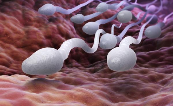 12 lucruri pe care trebuie să le cunoașteți despre pre-ejaculare