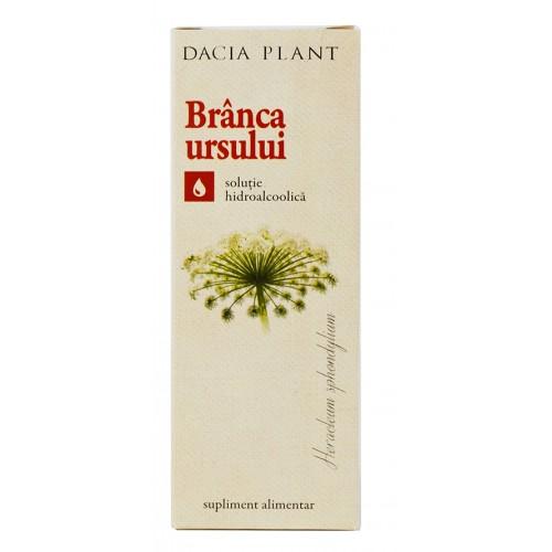 Ceai Dacia Plant Păpădie 50g