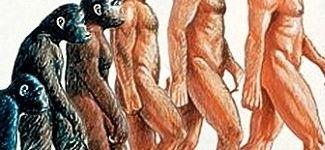 penis la om motivele pierderii erecției la bărbați