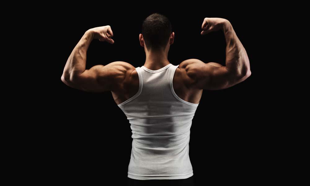 erecția crește testosteronul)