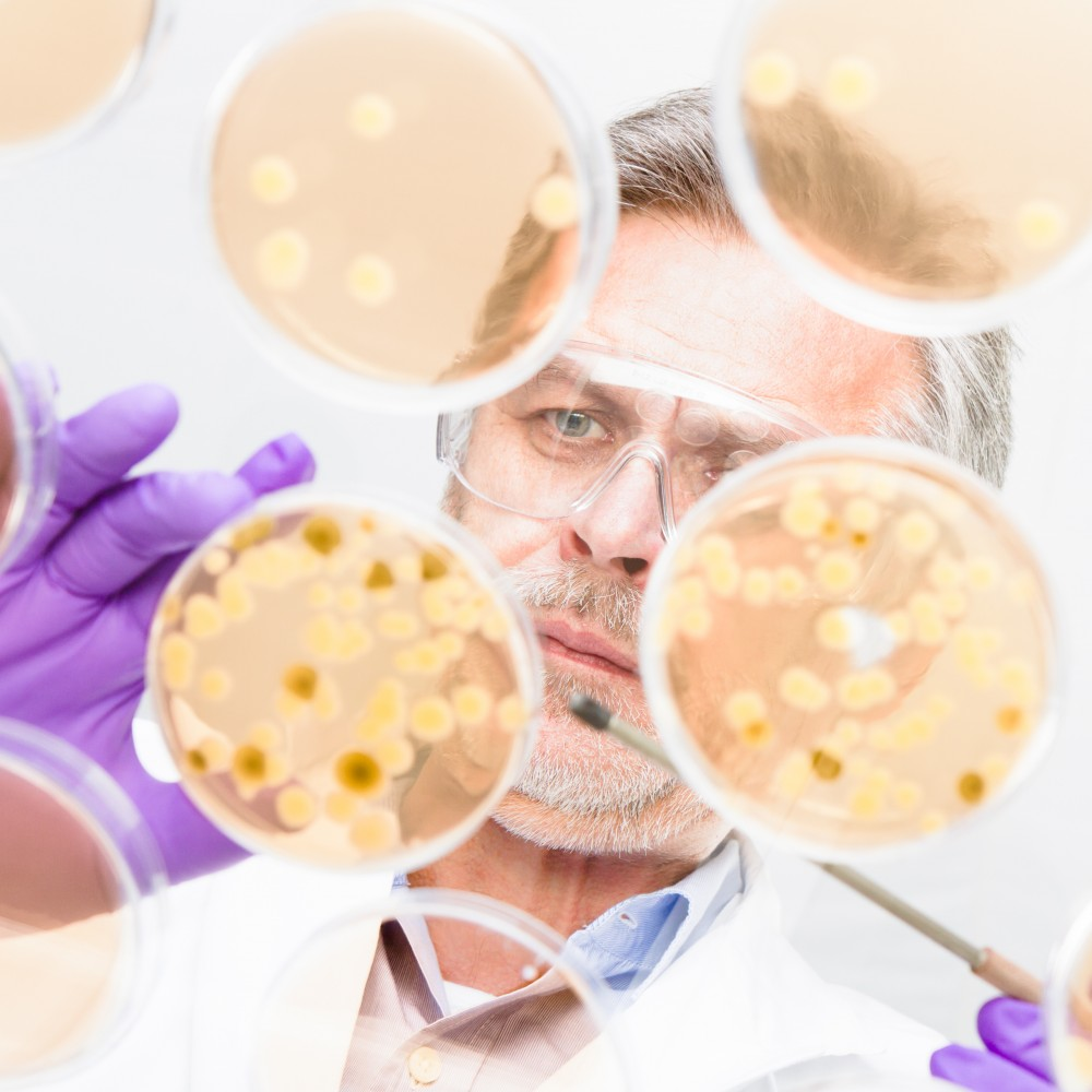 Ce trebuie sa stii la calculi renali: simptome, tratament si prevenire | Bioclinica