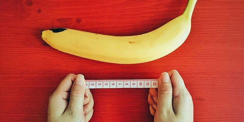 dimensiunea penisului pentru fertilizare toate cauzele curburii penisului