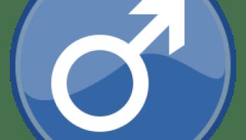 opțiuni penis masculin)