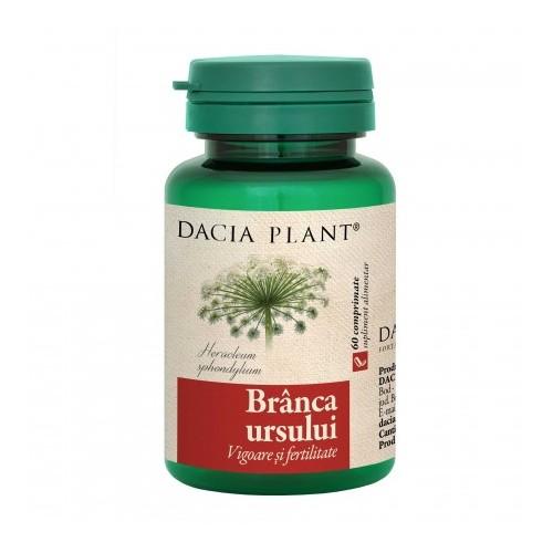 plante pentru erecția masculină