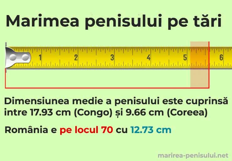 estimarea dimensiunii penisului