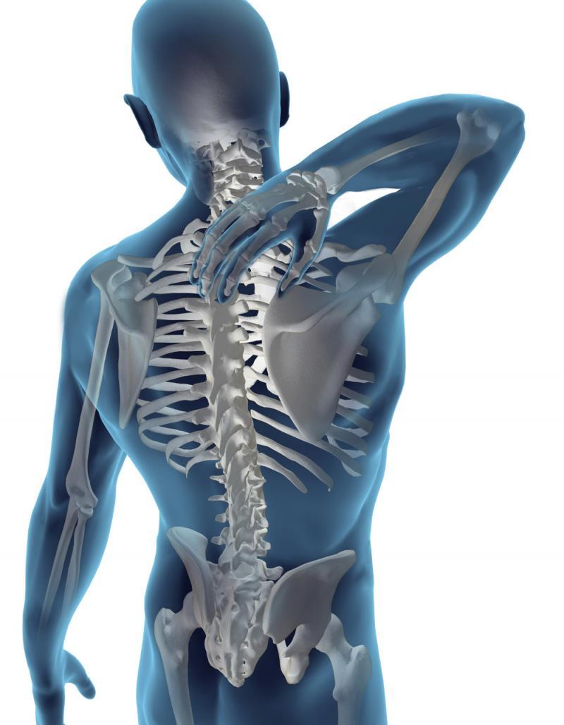 coloana vertebrală de erecție)