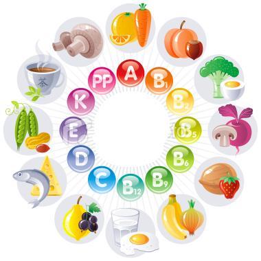 erecția vitaminelor