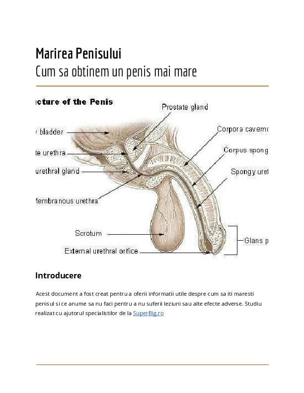 exercitarea modului de mărire a penisului)