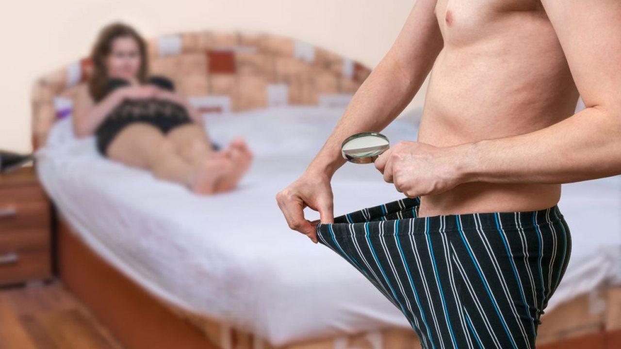 studiu penis masculin