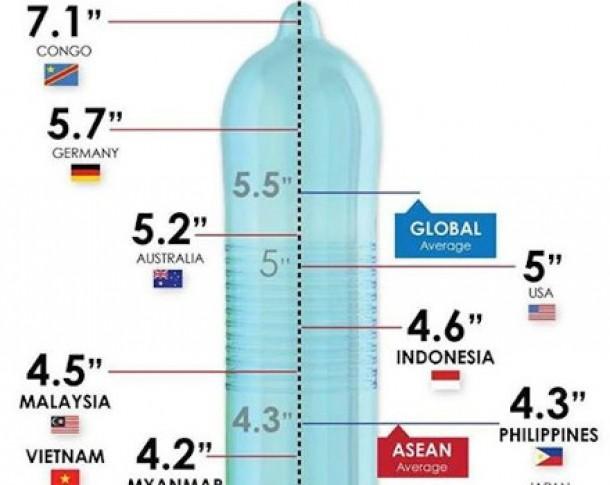 dimensiunea medie a penisului la un bărbat)