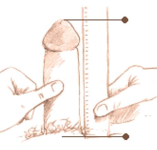 un pin în penis