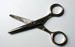 femeie mi- a tăiat penisul)