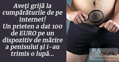 dopul penisului)