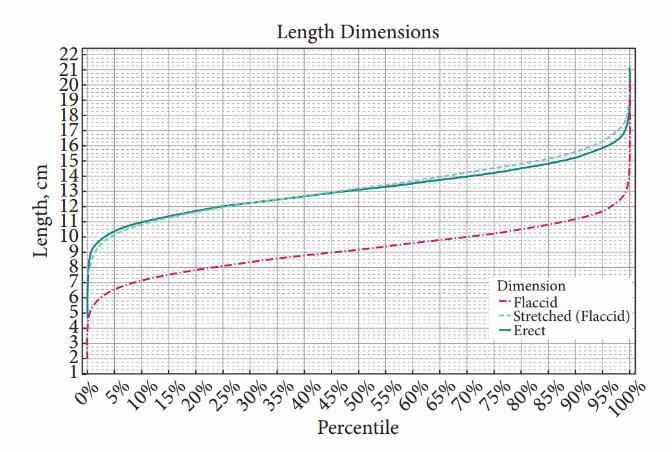 lungimea penisului și norma de circumferință