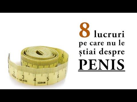 curea penisului)