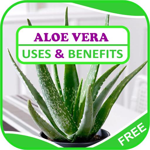 aplicație de aloe pentru erecție