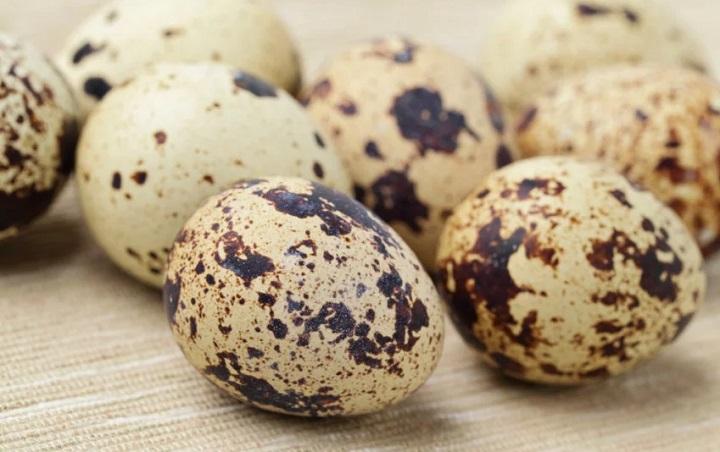erecția ouălor crude)